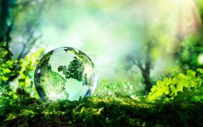 Vacancy  – Environmental Consultant